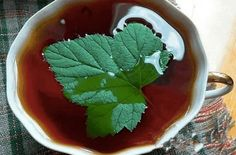 Tatar tea with currants and honey Honey Recipes, Medicinal Herbs, Never Give Up, Tea Time, Alcoholic Drinks, Berries, Good Food, Health Fitness, Pudding