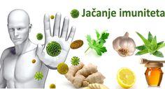 Recepti za prirodno jačanje imuniteta – ZLATNI RECEPTI