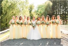 A spring Windows on the Water at Frogbridge Wedding in Millstone NJ, photographed by NJ Husband and Wife Photography Team Idalia Photography. Pale Yellow Bridesmaid Dresses, Light Yellow Weddings, Yellow Wedding Colors, Wedding Bridesmaid Dresses, Daisy Wedding, Dream Wedding, Spring Wedding, Wedding Photos, Wedding Venues