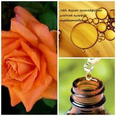 Λάδι άγριου τριαντάφυλλου. Δέρμα χωρίς κηλίδες, ρυτίδες, ραγάδες. | Μυστικά ομορφιάς | mystikaomorfias.gr