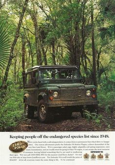Keeping people off the endangered species list since 1948. - ROVERHAUL.com, Land Rover Restorations & Pictures