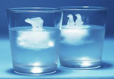 bringing the arctic creatures to your drinks