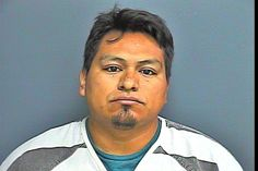 ROSALES, JACOB DELALUZ  was Arrested in Sevier County, TN