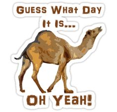 "guess what day it is camel | Guess What Day It Is."" Stickers by MyBestDesigns 