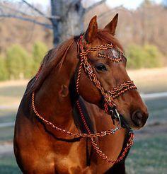 "Paracord Horse Bridle   ... Braided Bling Bridle Reins, ""Tiger"" Horse Tack, BLACK / ORANGE --NEW"