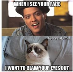 Grumpy Cat sings Just The Way You Are by Bruno Mars #GrumpyCat #Meme