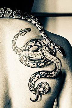 Snake with her tattoo. This made me smile:)