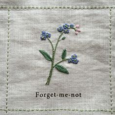Nuu Amu, forget-me-not