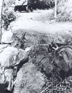 MG 42 position in Bavent woods Normandy 1944, pin by Paolo Marzioli