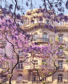 Beautiful facade in Zaragoza, Spain Violet Aesthetic, Lavender Aesthetic, Travel Aesthetic, Beautiful Architecture, Pretty Pictures, Aesthetic Pictures, Aesthetic Wallpapers, Places To Go, Beautiful Places