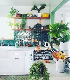 Wonder if having a green kitchen makes us cook more green foods? Last week it was pesto, today, kale smoothies  @justinablakeney #jungalowstyle #jungalowbythrriver thejungalow.com