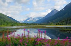 Beautiful Alaska, I'd love to go whale watching and eat pleanty of fresh salmon and crab!