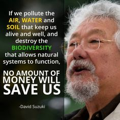 If we pollute the air, water and soil that keeps us alive and well, and destroy the biodiversity that allows natural systems to function, no amount of money will save us. -David Suzuki