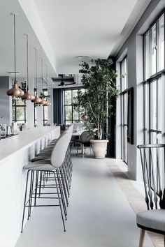 soft greys + architectural windows + copper pendants + greenery