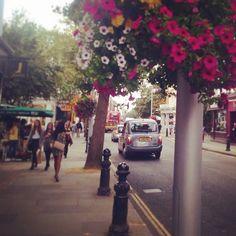 #pesquisa2014 #london #londres #bikbok