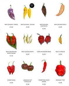 Super hot pepper seeds like Carolina Reaper seeds: www.sandiaseed.com/collections/hottest-pepper-seeds