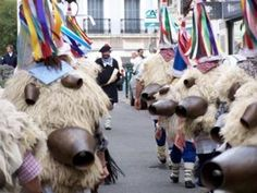Carnaval 2012, sous le signe de la tradition Site Officiel, Culture, Camel, Traditional, Animals, Carnival, Basque Country, Animales, Animaux
