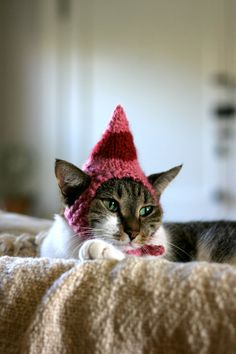Based on one of my favorite Christmas movies, your cat can channel Jovies sweet Elf Hat this holiday season. Knit from fuzzy pink yarn with a red band, I wanted this hat to resemble the felted elf hats in the movie. Perfect for Christmas photos!    Check out Buddy the Elfs Cat Hat here:  http://www.etsy.com/listing/83987415/buddy-the-elf-cat-hat    My models are full grown cats, and I make all my hats according to their measurements. Since they are hand knit, there is a certain amount of…