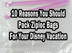 10 Reasons to Put Ziploc Bags on Your Disney Packing List | Mousekejournals