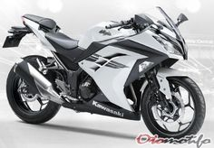 Motor Ninja 300