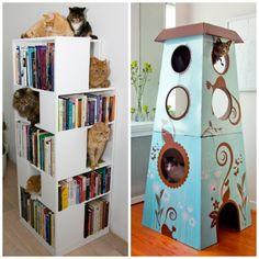 Estante livros/gatos