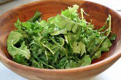 Meyer Lemon Viniagrette Salad Dressing