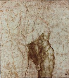 Michelangelo  https://www.flickr.com/photos/78968329@N08/16537692452/in/photostream/