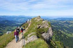 Der Hochgrat (1.834 Meter) bei Oberstaufen ist die höchste Spitze im westlichen Allgäu und liegt im ... - parasola parasola /Getty Images