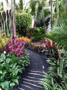 If you live in a dry and arid climate then your desert landscaping is going to take a little more planning than some other parts of the country. desert landscaping will have to work with a plan that includes only plants and trees that Small Tropical Gardens, Tropical Garden Design, Tropical Backyard, Small Gardens, Outdoor Gardens, Florida Landscaping, Tropical Landscaping, Landscaping With Rocks, Backyard Landscaping