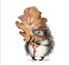 Animal Paintings, Animal Drawings, Cool Drawings, Painting & Drawing, Hedgehog Illustration, Hedgehog Art, Doodle Inspiration, Autumn Painting, Fairytale Art