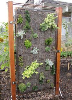 gabion green wall, in steel frame, http://www.gabion1.com