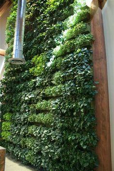 Indoor Tropical Vertical Garden | Flickr - Photo Sharing!