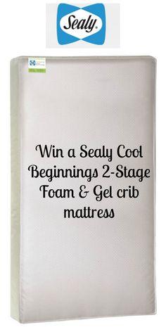 Sealy Cool Beginnings 2