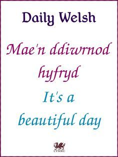 Daily Welsh