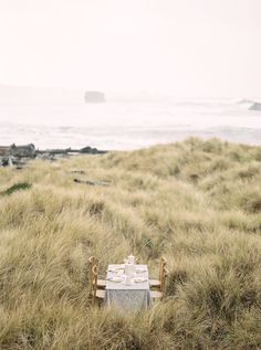 Northern California Wedding Photographer capturing natural and honest emotions that can be cherished and passed on to future generations Wedding Reception Tables, Minimalist Wedding, Northern California, Coastal, Neutral, Wedding Inspiration, Weddings, Nature, Photography