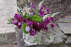 blumen lila moss vase birken stamm