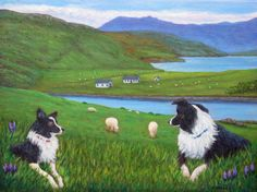 """""""Skye Watch"""" with Border Collies watching sheep on the Isle of Skye, Scotland, from an original painting by North Carolina artist, Fran Brooks. This painting was donated to East Tennessee Border Collie Rescue auction fundraiser.  www.artistnannie.com"""