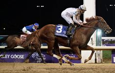 Mike Smith winning the Breeders Cup Classic (he should have won it last year too!!)