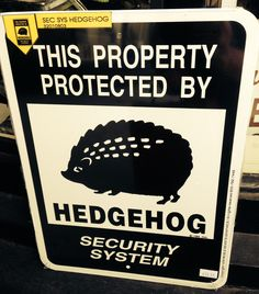 Hedgehog Security System