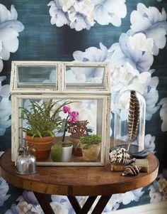 DIY terrarium  from picture frames