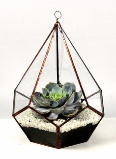 Teardrop glass terrarium by GlasshouseUK on Etsy