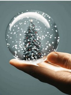 snow globe photo: Snow In A Globe Christmas Snow Globes, Christmas Pictures, Christmas And New Year, Winter Christmas, All Things Christmas, Christmas Holidays, Merry Christmas, Gif Noel, Water Globes