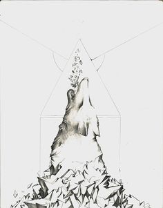shvlfce | ILLUSTRATION  #shvlfce #illustration #sphere #future #design #wolf #geometry