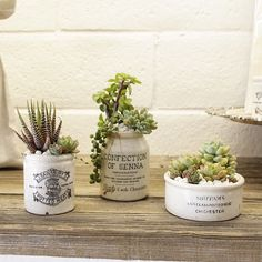 Cute Vintage Marmalade Jars Planted with Succulents