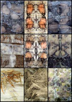 Sandra Fisher - Plant dyed silk