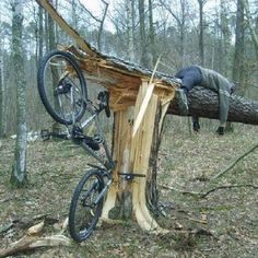 It must've been quite a speed he hit that tree at! Sadly, another drunk rider.