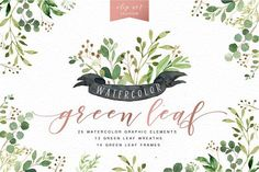Watercolor Green Leaf Clip Art by Graphic Box on @creativemarket