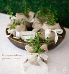 bundles of herbs