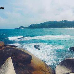 """E ontem foi dia de curtir a Praia do Mole, em Florianópolis, Santa Catarina. Praia de ondas fortes e sede de campeonatos de Surf, atraí turistas de todas as regiões.  Atualmente é uma das praias mais preservadas da Costa Leste. Andando pelas suas areias não fica difícil imaginar a origem do nome. Ao pisar o pé afunda, 'quase' como uma areia movediça. Os pescadores chamam de """"chão mole"""". Daí o nome da praia. Até os anos 80, a Praia Mole era deserta, frequentada apenas por alguns surfistas em…"""