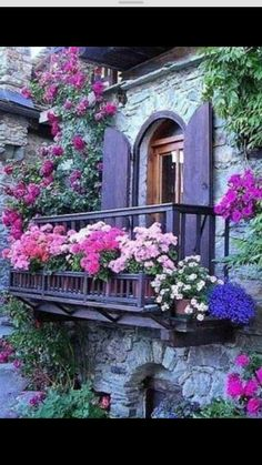 150 best balcony gardening images window boxes garden windows rh pinterest com